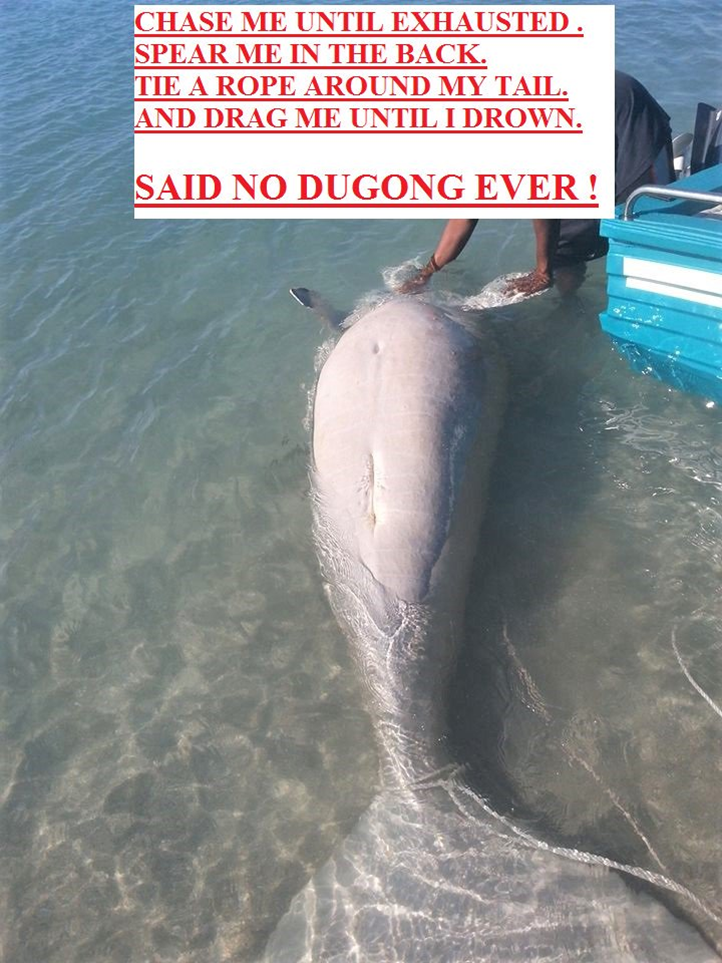 Dugong_Drowned.png