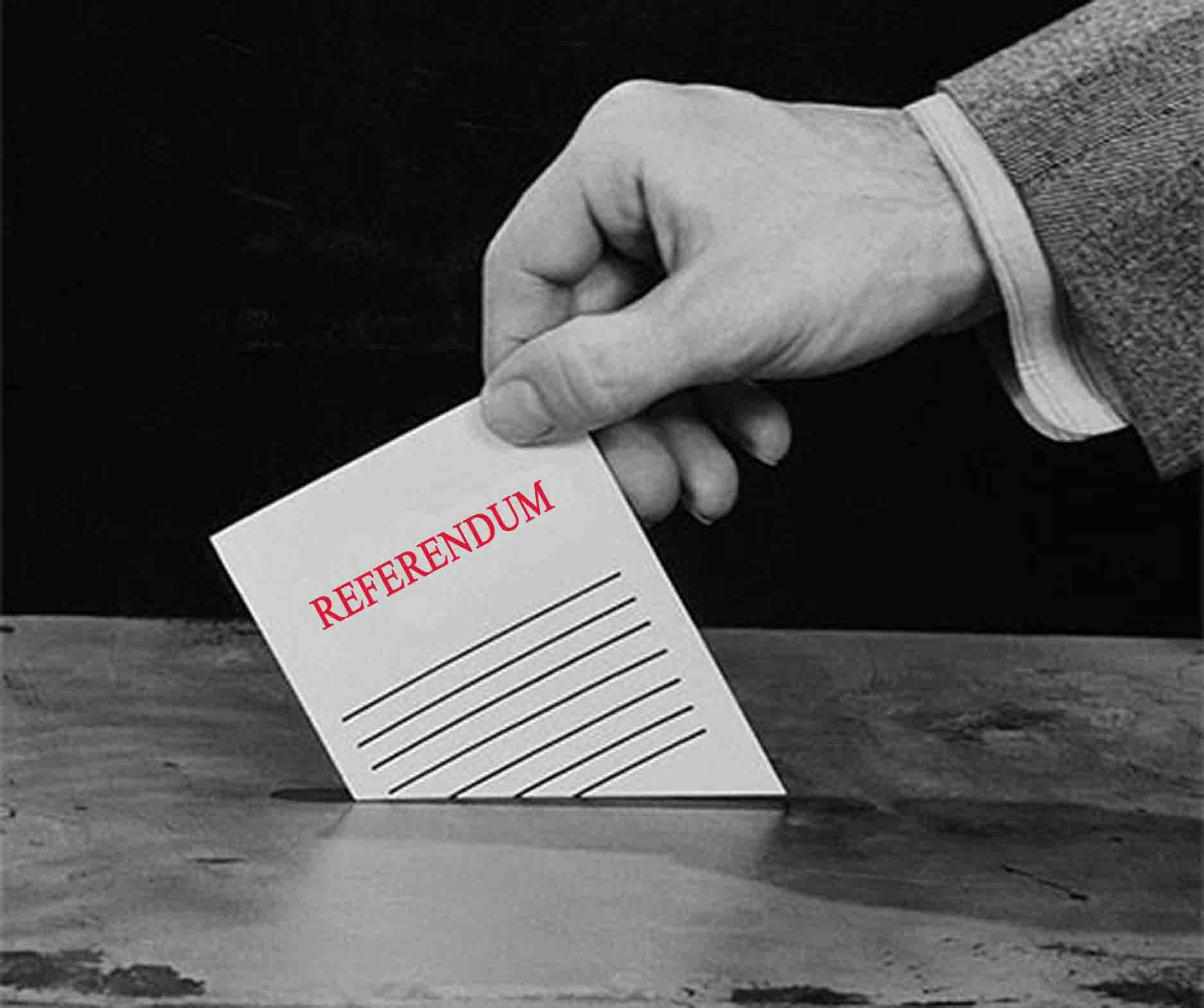 43-referendum_immagine.jpg