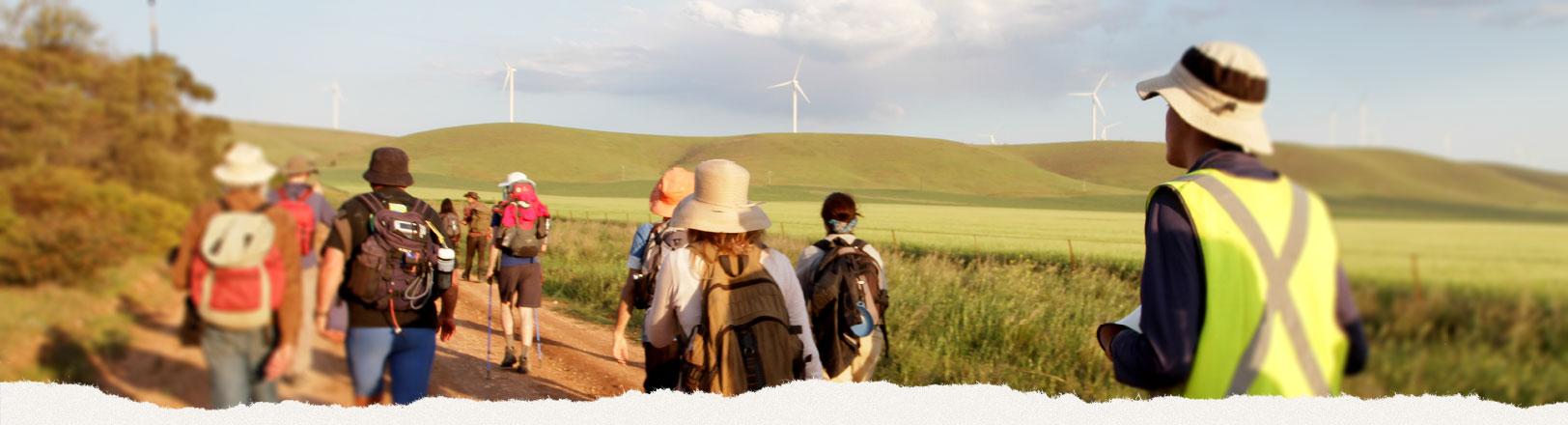 Walk for Solar