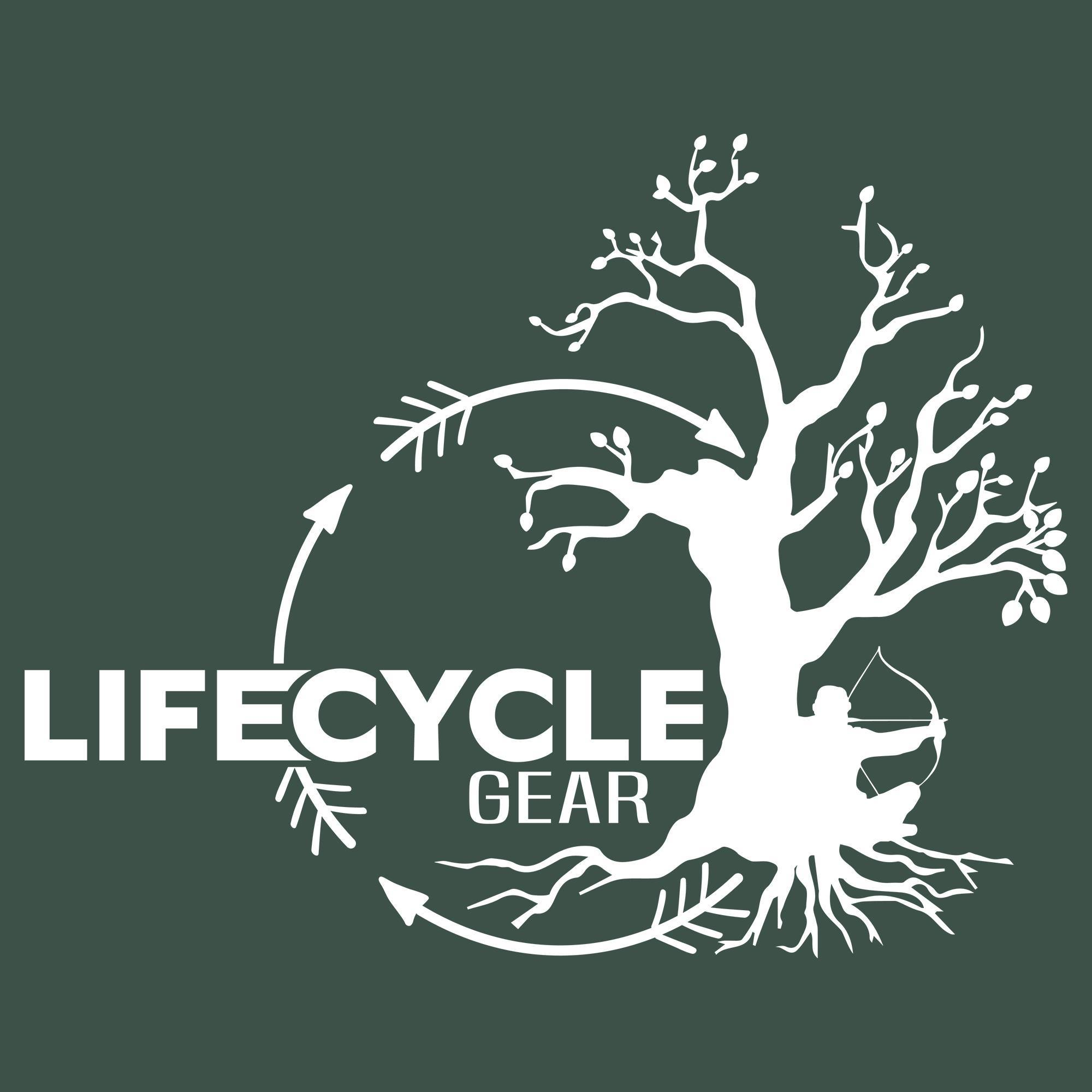 LIfeCycleGear.jpg