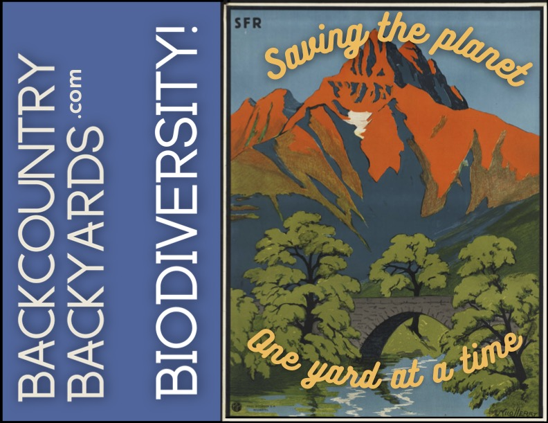 backcountry_backyards_(11_x_8.5_in).jpg
