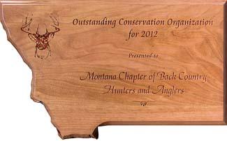 mt award 2012