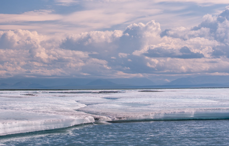 Support the Arctic National Wildlife Refuge