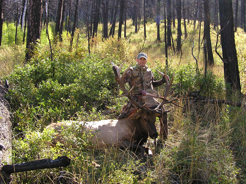 5Dan_Parkinson-Bow-Elk.jpg