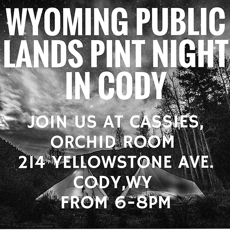 Cody_WY_Pint_night.png