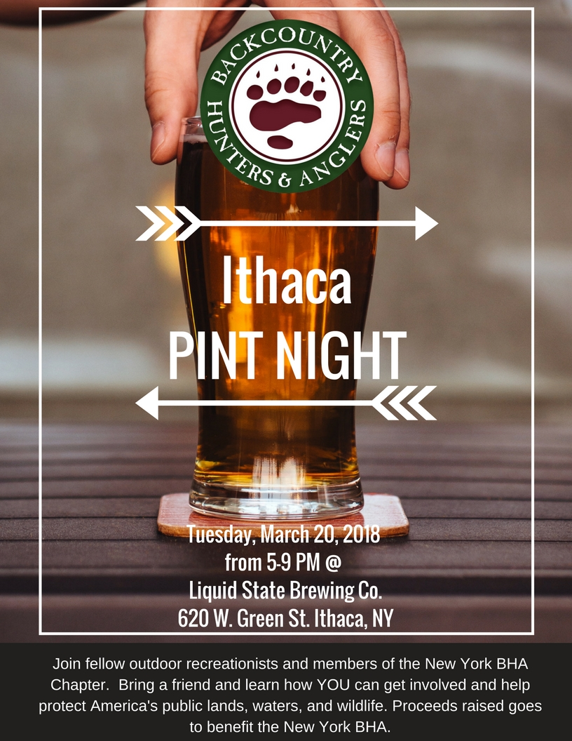 Ithaca_Pint_Night.jpg