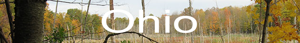 ohion.banner.2.png