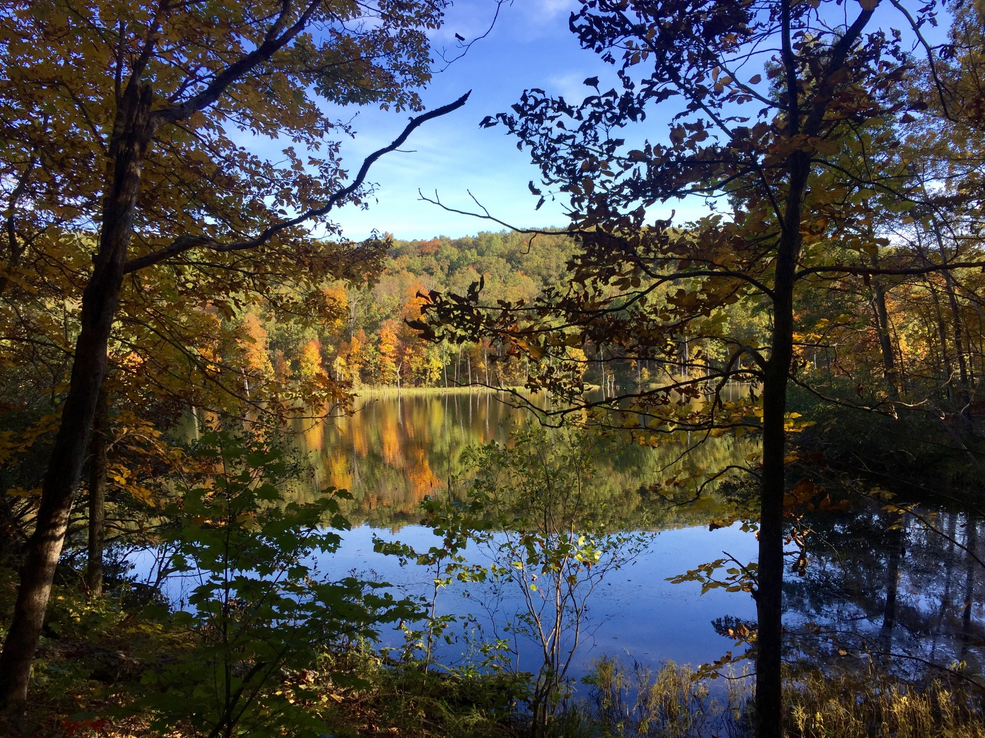 fall-lake-view.jpg
