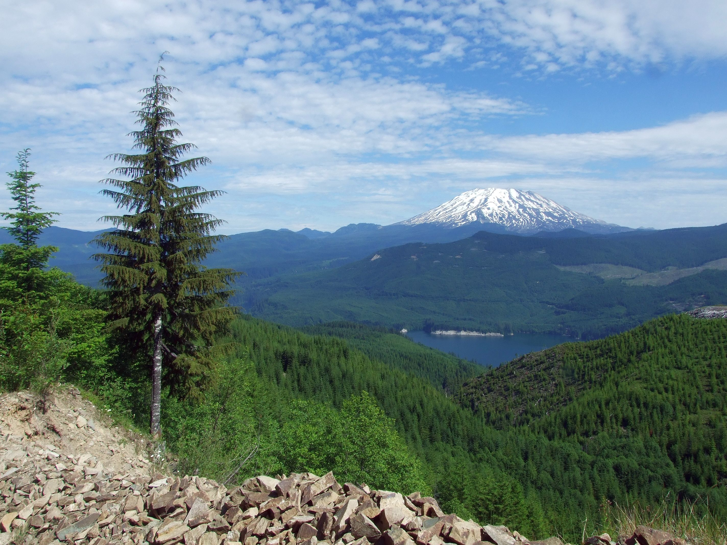 Pope_Resource_Lands_-_Mt._St._Helens_-_Columbia_Land_Trust.jpg