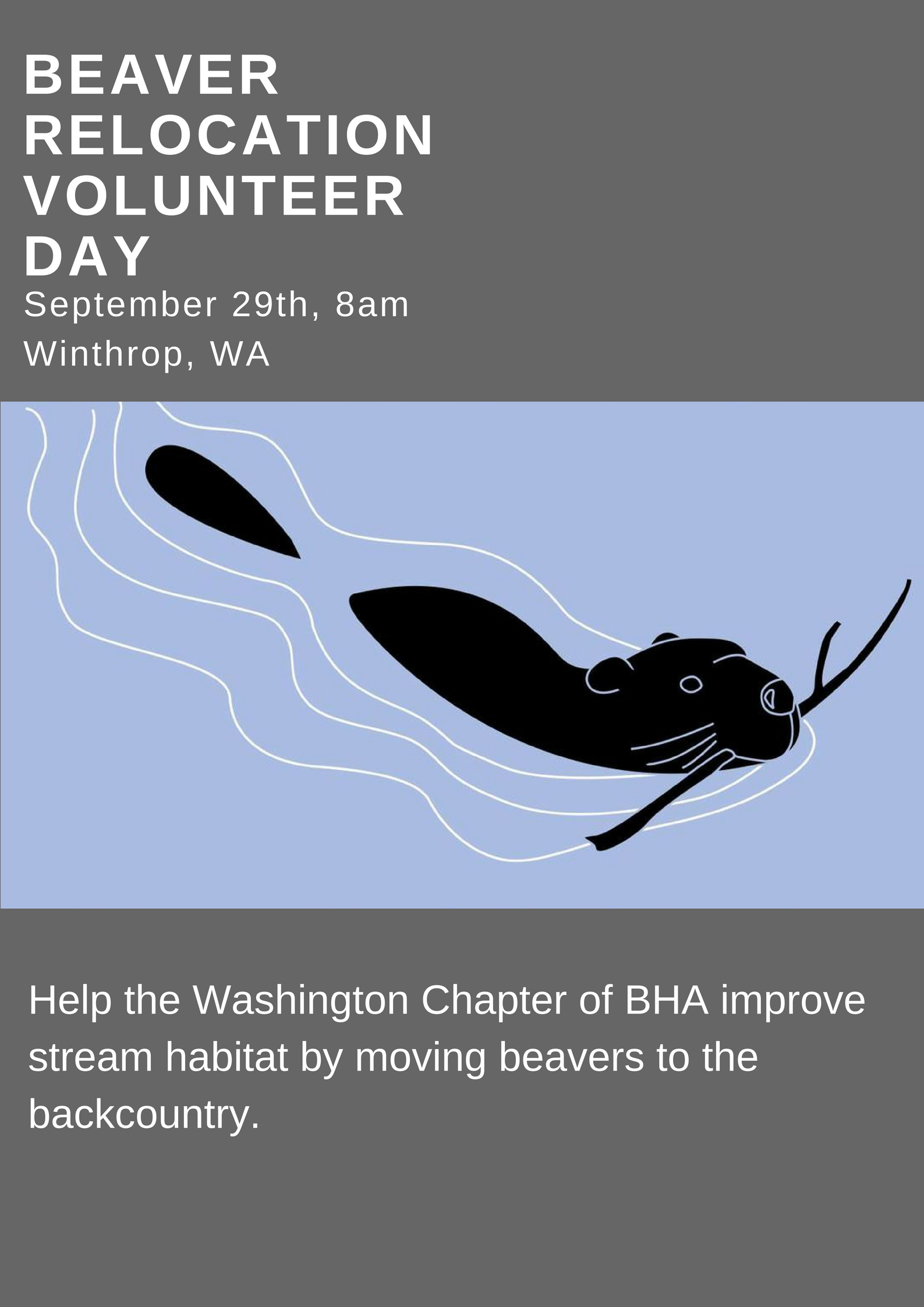 Beaver_Relocation_Volunteer_Day.jpg