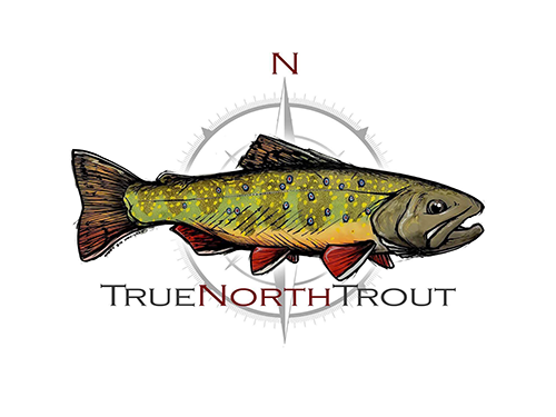 true.north.trout.png