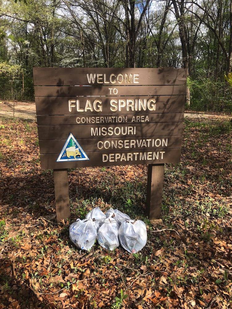 Flag_Spring.jpg