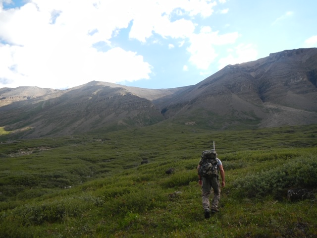 Wildlife Stewardship in British Columbia