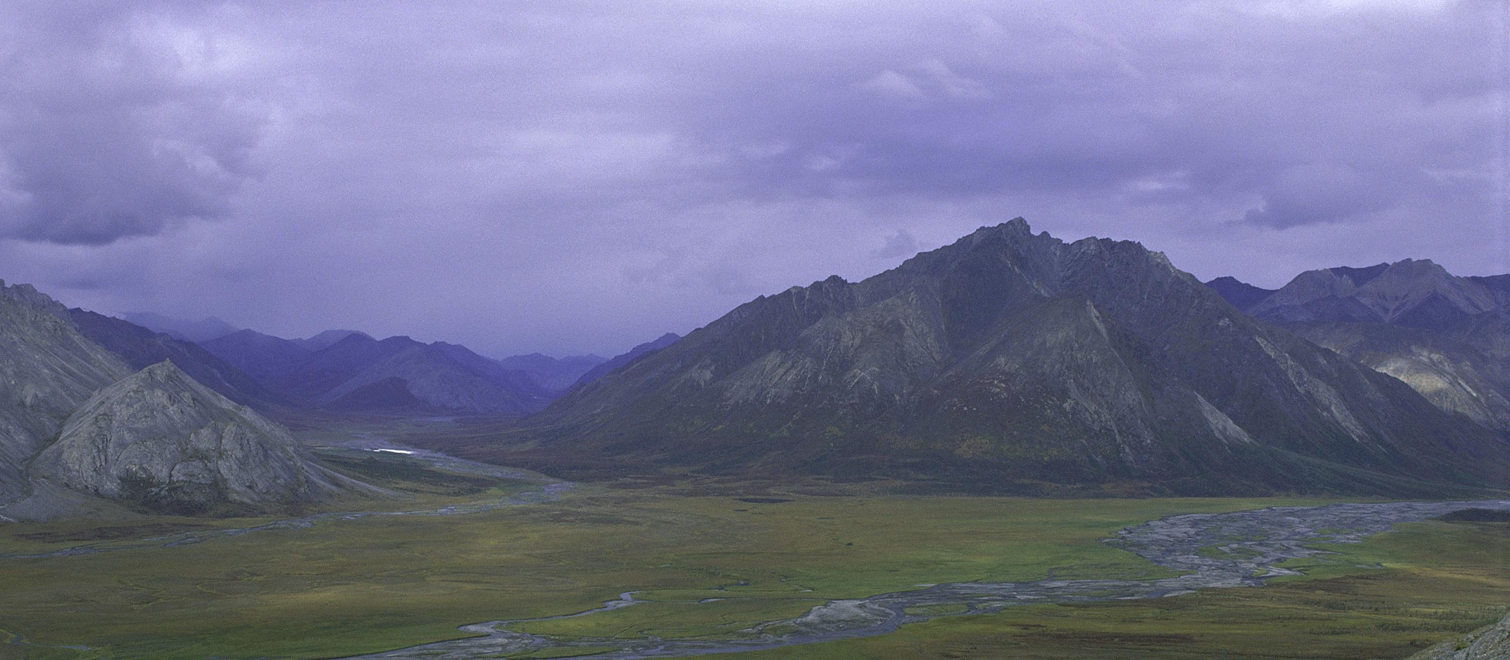 Sign Up to Protect Alaska's Arctic