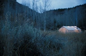 elk_camp_at_the_head_of_east_canyon-min.jpg