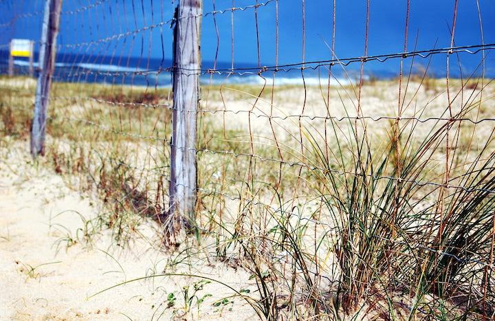 piqsels.com-id-fdcsc.jpg
