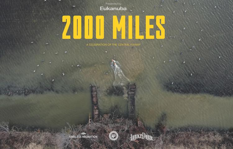 2000_miles_banner_image.jpg