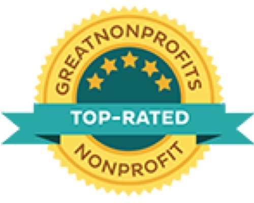 Great Non-Profits