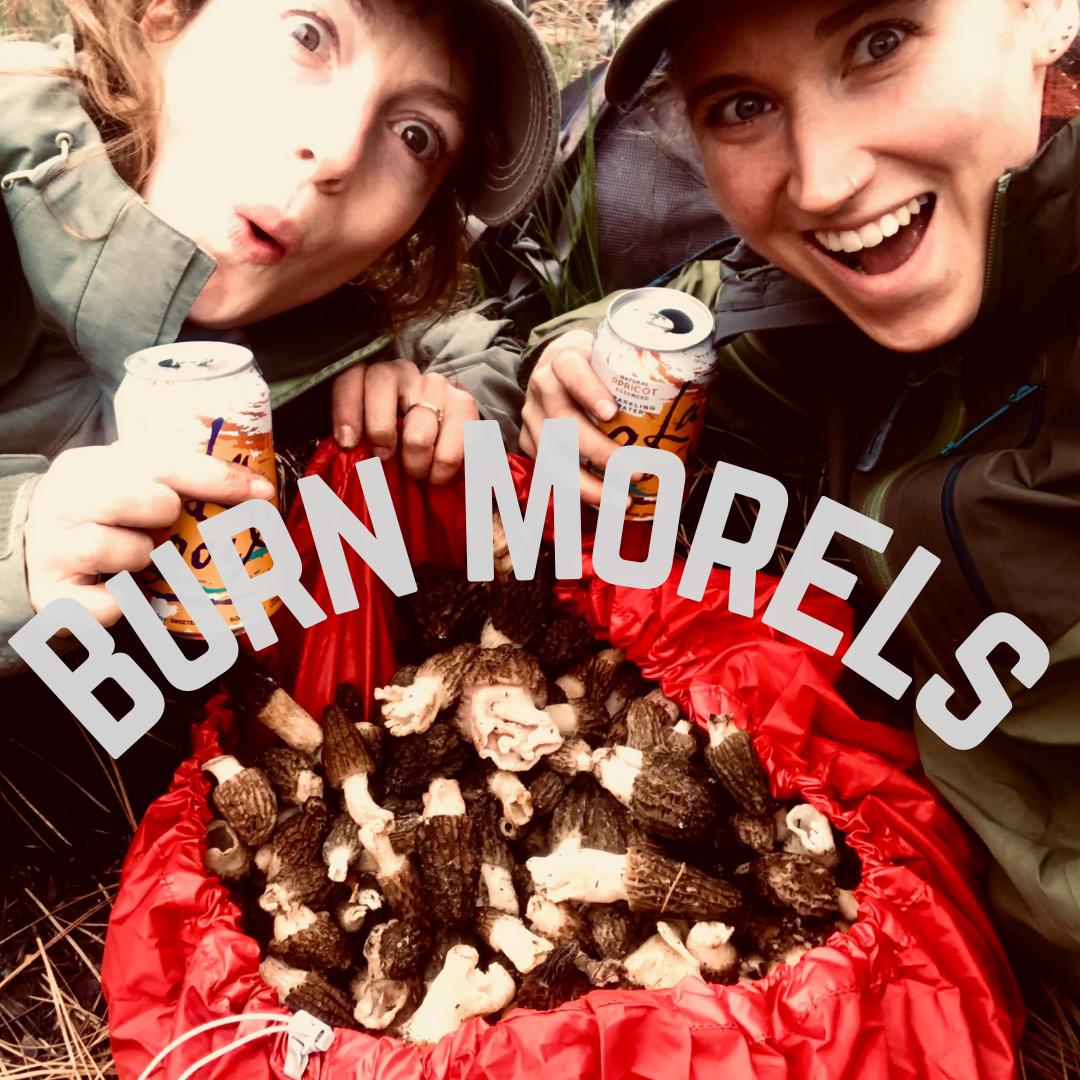 burn_morels_IG.png