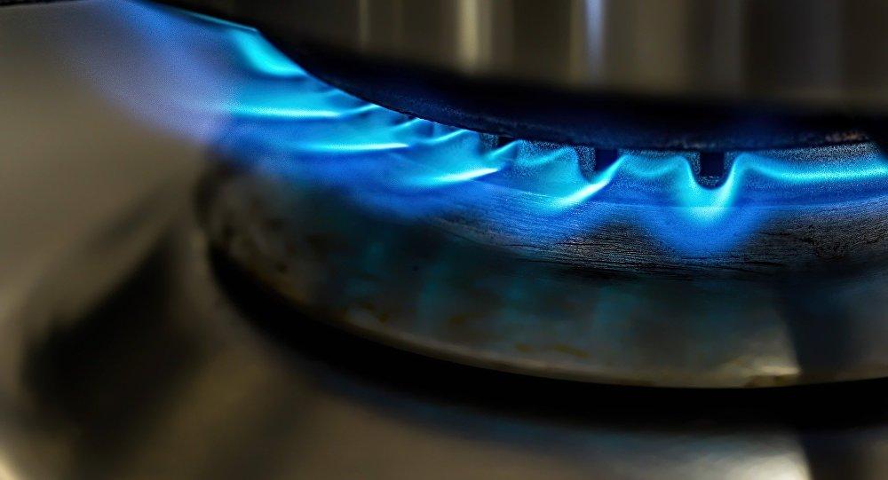 Gas_Hob.jpg