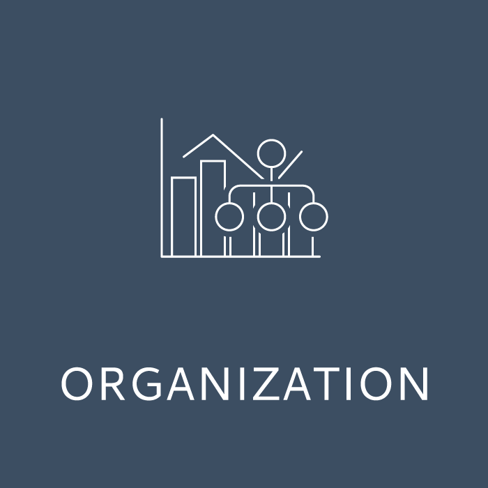 target market organization summer school