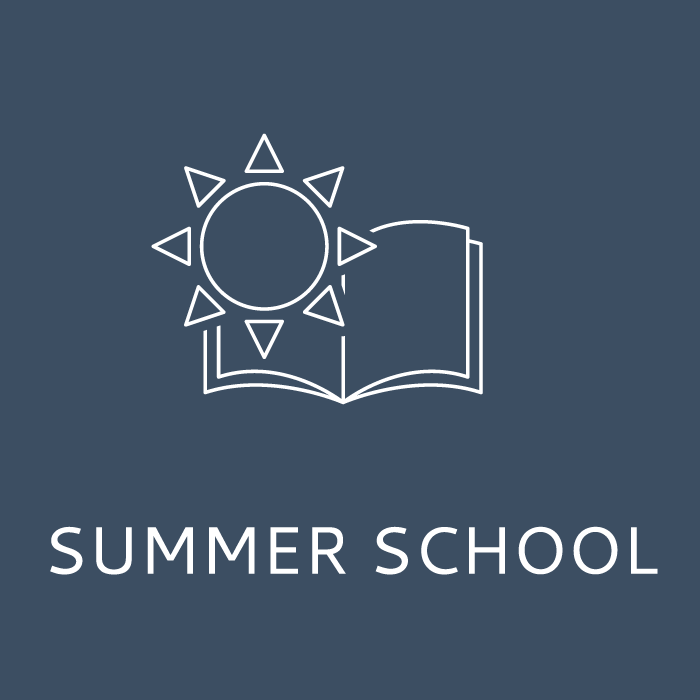 Icon_2(Service_offer)_Summer_school_700x700.png