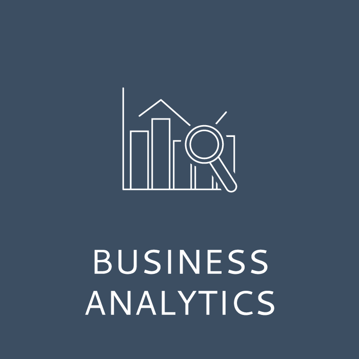 Business Analytics Working in the Digital Age