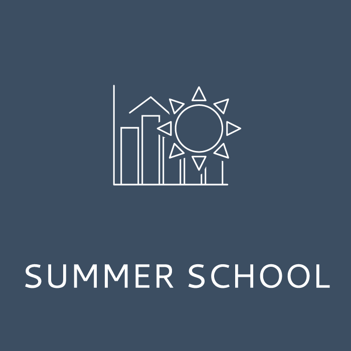 Icon_2(Service_offer)_Summer_school_700x700(with-bars).png