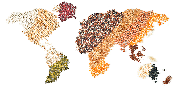 map_of_world_in_grains__lentils.jpg