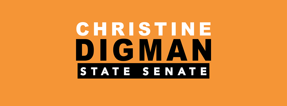 ChristineDigmanStateSenate