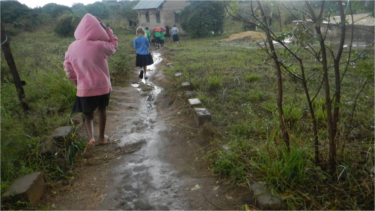 clara_water_rain_path.jpg
