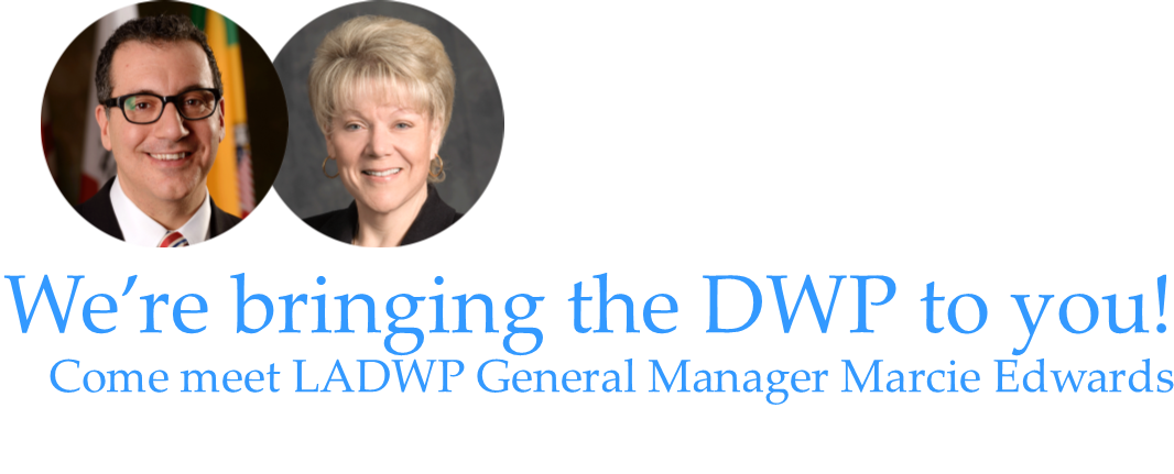 We're bringing the DWP to you!