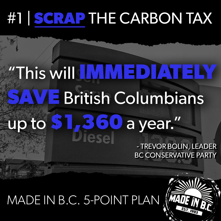 5point_carbontax_006.png