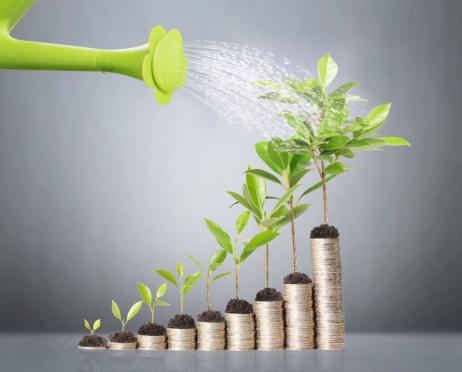 grow_your_wealth.jpg