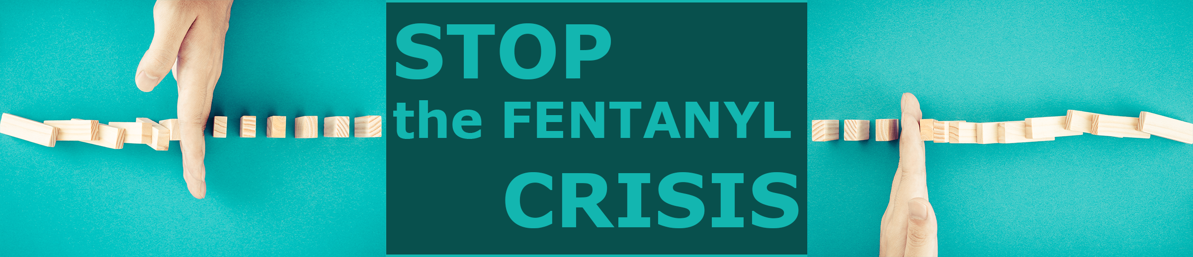 Fentanyl Crisis banner