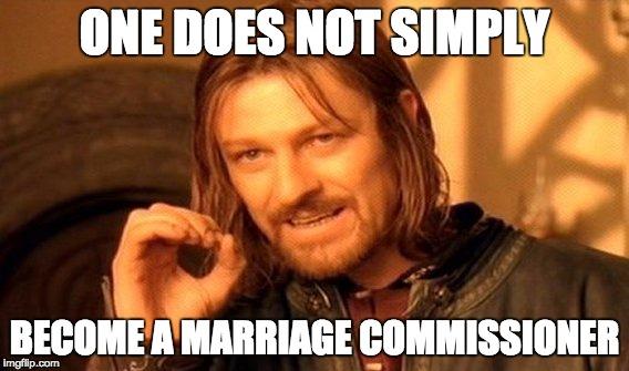 commissioner.jpg