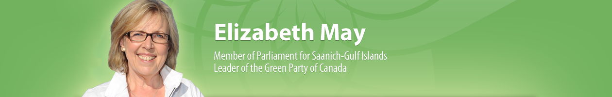 ElizabethMay-top-bg-english.png