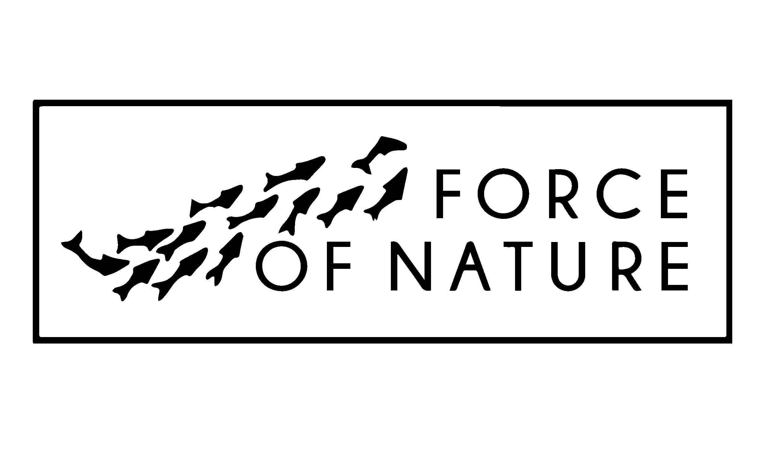 FON_logo.png