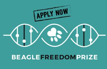 Beagle Freedom Prize