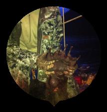 hunter-paw-thumbnail.png
