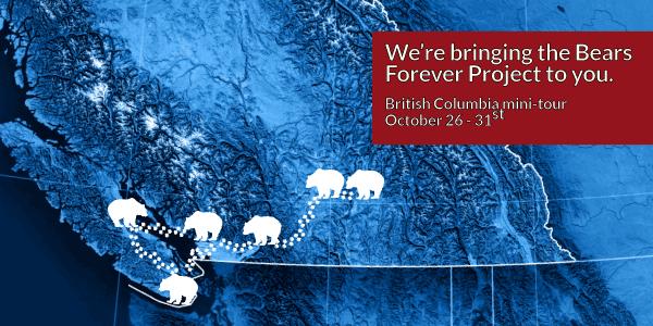 BearsForever-Tour-Blog.png