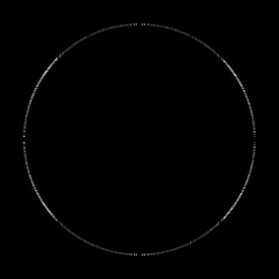 LH_Logo_140603_BW.jpg