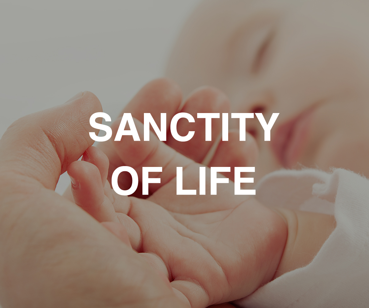 sanctity-of-life_2.jpg