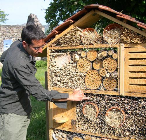 Construction d 39 un h tel insectes - Hotel a insectes nature et decouverte ...