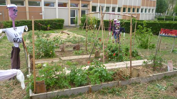 jardin24.jpg