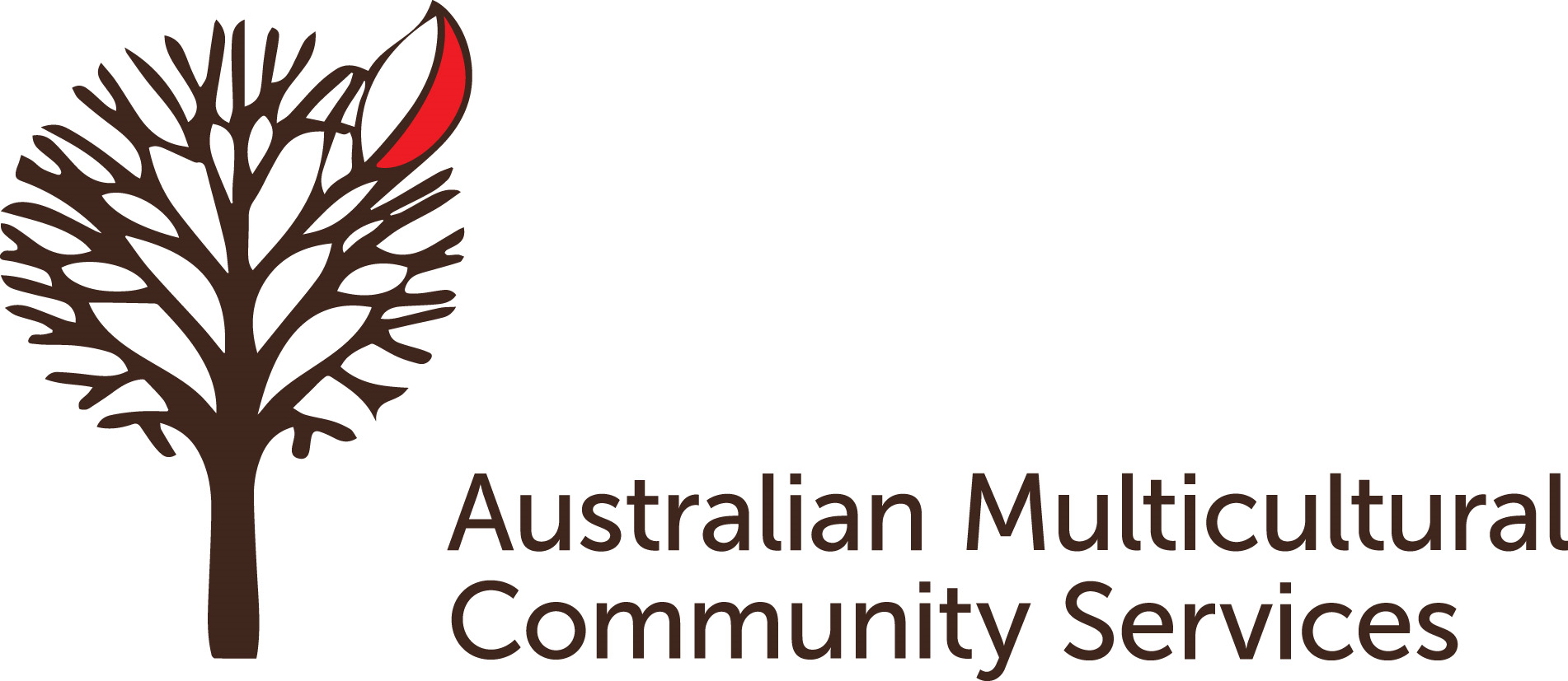 AMCS_Logo_Horiz_(002).png