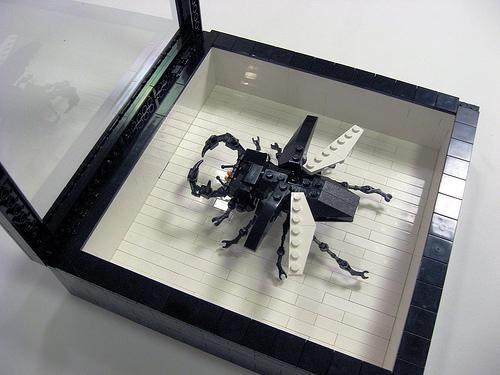 LEGO_Bug_image_2.jpg