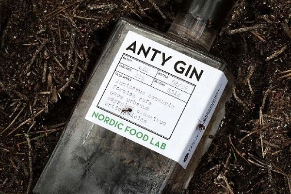 Juniper Gin with a touch of Ant