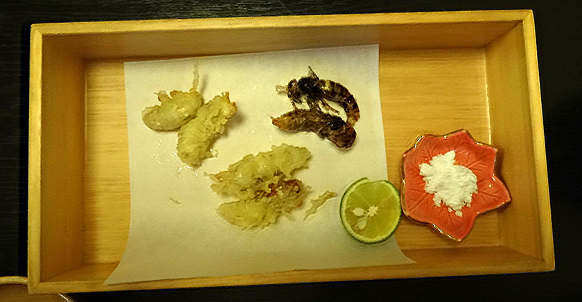 Eating wasps and hornets in Japan