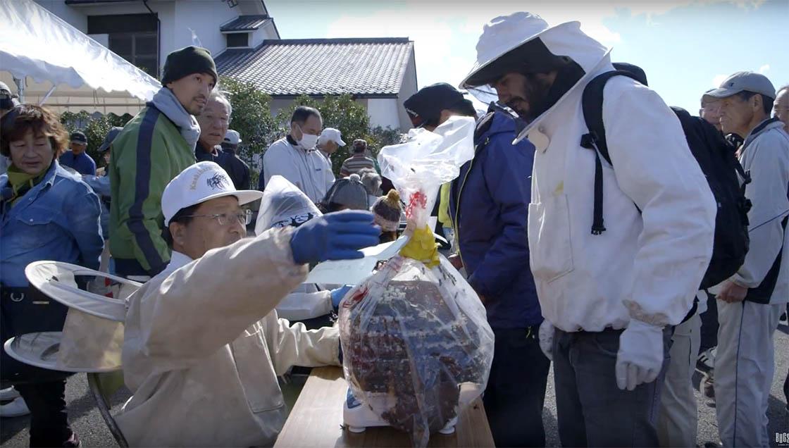 The Kushihara Wasp Festival